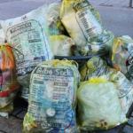 sacchetti rifiuti borgosesia